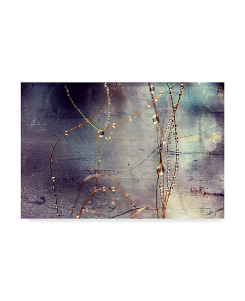 "Trademark Global Incredi 'Weathered Droplets' Canvas Art - 32"" x 22"""