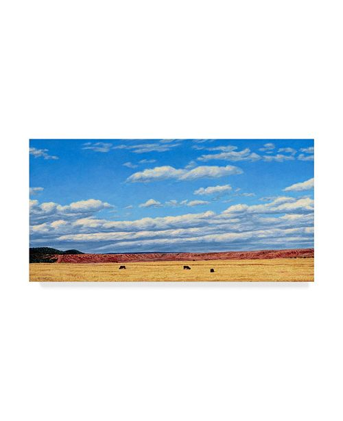 "Trademark Global James W. Johnson 'Agri Nature 15' Canvas Art - 47"" x 24"""