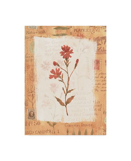 "Trademark Global Hope Street Designs 'Red Flower Rustic' Canvas Art - 35"" x 47"""
