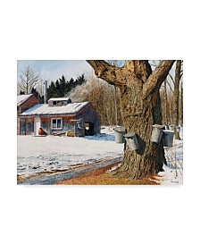 "Michael Davidoff 'Sugarhouse Near Becket' Canvas Art - 47"" x 35"""