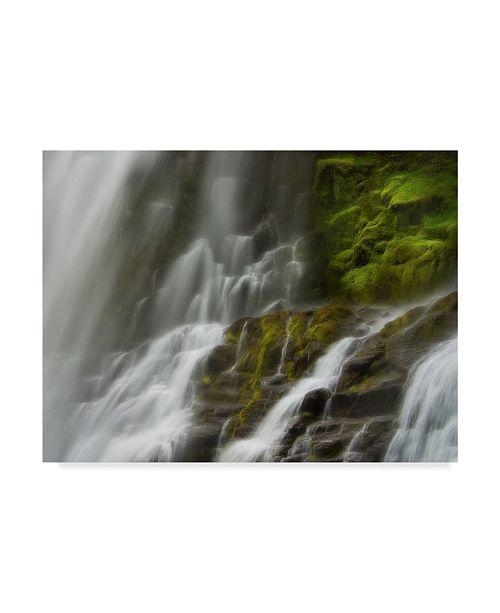 "Trademark Global Natalie Mikaels 'Glowing Mist Water' Canvas Art - 47"" x 35"""