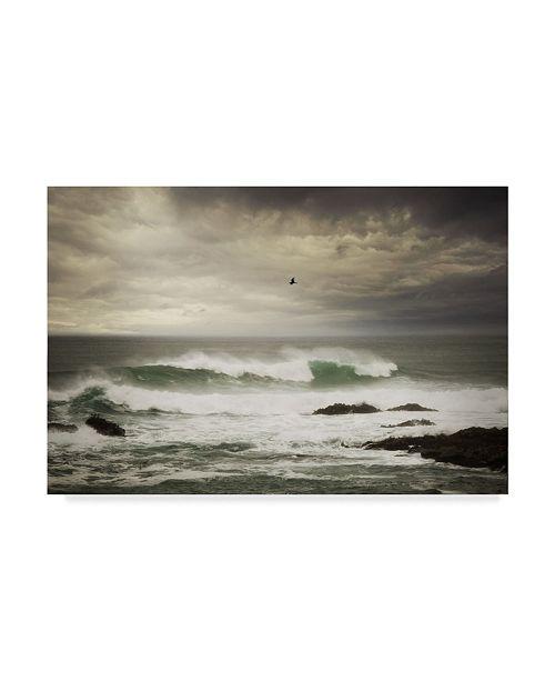 "Trademark Global Natalie Mikaels 'The Flight' Canvas Art - 47"" x 30"""