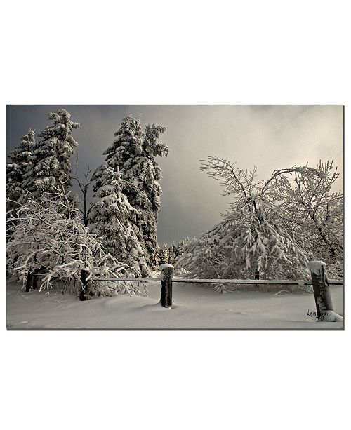"Trademark Global Winter Scene II by Lois Bryan - Canvas Art - 24"" x 16"""