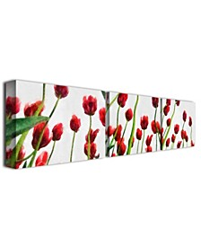"""Michelle Calkins 'Red Tulips from Bottom Up' Canvas Art - 32"""" x 22"""""""