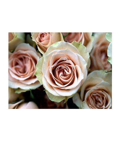 "Trademark Global Kathy Yates 'Pale Pink Roses' Canvas Art - 32"" x 22"""