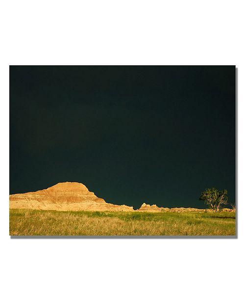 "Trademark Global Nicole Dietz 'Approaching Storm' Canvas Art - 24"" x 18"""