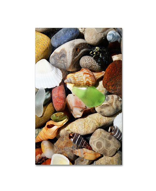 "Trademark Global Michelle Calkins 'PetoskeyStones l' Canvas Art - 24"" x 16"""