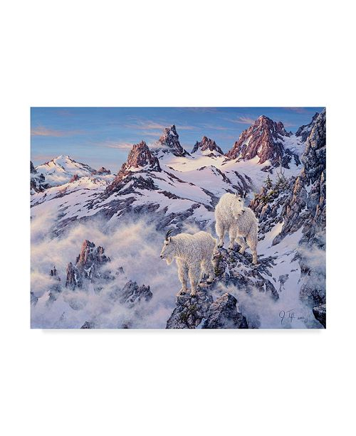 "Trademark Global Jeff Tift 'Among The Clouds' Canvas Art - 14"" x 19"""