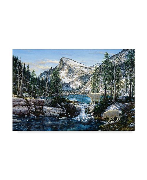 """Trademark Global Jeff Tift 'Summer In The Enchantments' Canvas Art - 12"""" x 19"""""""
