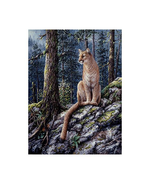 """Trademark Global Jeff Tift 'King Of The Forest' Canvas Art - 14"""" x 19"""""""