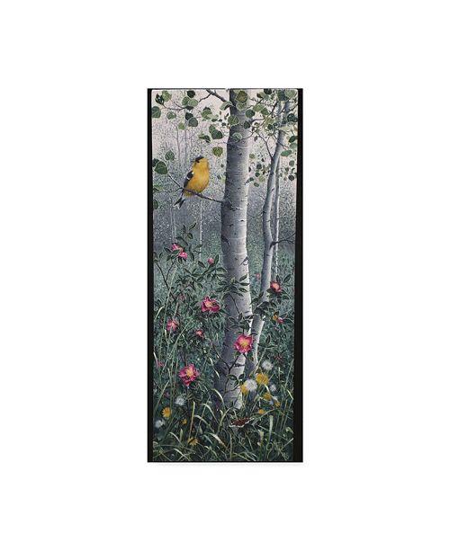 "Trademark Global Jeff Tift 'Shades Of Summer' Canvas Art - 10"" x 24"""