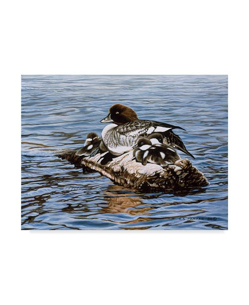 "Trademark Global Ron Parker 'Goldeneye And Ducklings' Canvas Art - 14"" x 19"""