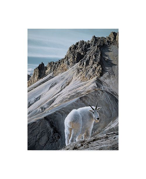 "Trademark Global Ron Parker 'Ramparts Mountain Goats' Canvas Art - 14"" x 19"""