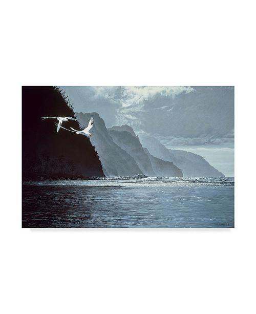 """Trademark Global Ron Parker 'White Tailed Tropic Birds' Canvas Art - 12"""" x 19"""""""