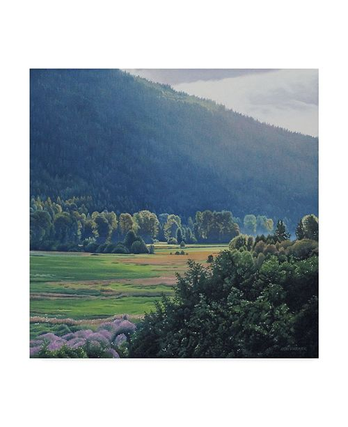 "Trademark Global Ron Parker 'St Marys Valley' Canvas Art - 14"" x 14"""