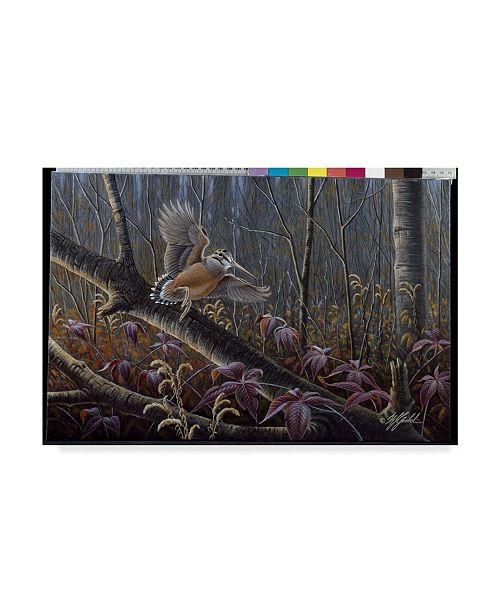 """Trademark Global Wilhelm Goebel 'Windfall Woodcock' Canvas Art - 12"""" x 19"""""""