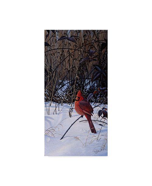 "Trademark Global Wilhelm Goebel 'Roadside Cardinal' Canvas Art - 10"" x 19"""