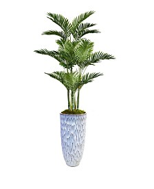 "Laura Ashley 79.5"" Palm Tree Faux decor with Burlap Kit in Resin Planter"