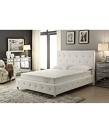 "Soft Aloe Vera Cal King 8"" Memory Foam Mattress"