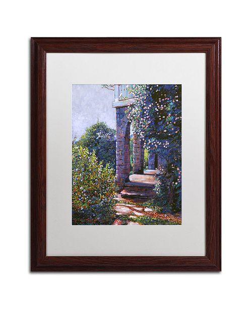 "Trademark Global David Lloyd Glover 'Climbing Roses' Matted Framed Art - 16"" x 20"""
