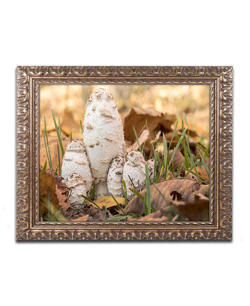 """Trademark Global Jason Shaffer 'Autumn Mushrooms' Ornate Framed Art - 14"""" x 11"""""""