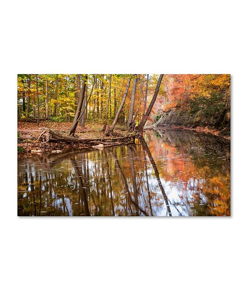 "Trademark Global Jason Shaffer 'Beaver Creek 1' Canvas Art - 19"" x 12"""