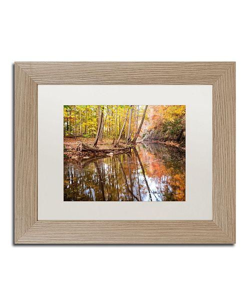 "Trademark Global Jason Shaffer 'Beaver Creek 1' Matted Framed Art - 14"" x 11"""