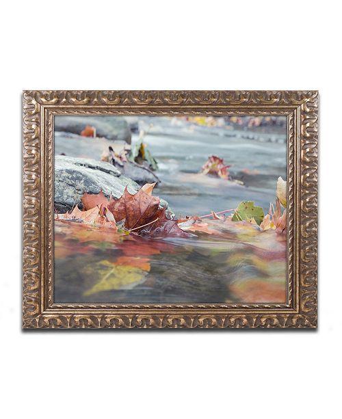 """Trademark Global Jason Shaffer 'Maple Creek' Ornate Framed Art - 14"""" x 11"""""""