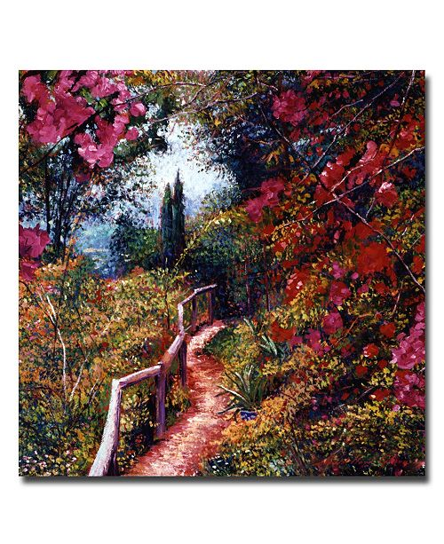 "Trademark Global David Lloyd Glover 'Bougainvillea Trail' Canvas Art - 35"" x 35"""
