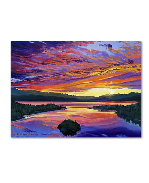 "Trademark Global David Lloyd Glover 'Paint Brush Sky' Canvas Art - 47"" x 35"""