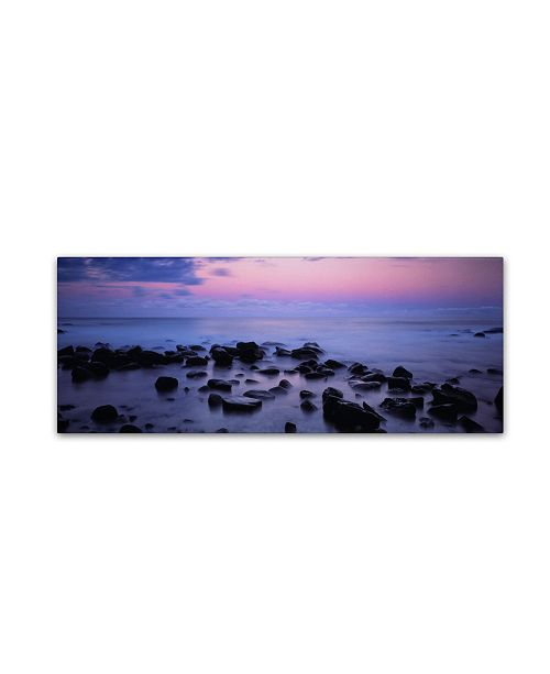 "Trademark Global David Evans 'Lorne Coastline-Great Ocean Road' Canvas Art - 24"" x 8"""