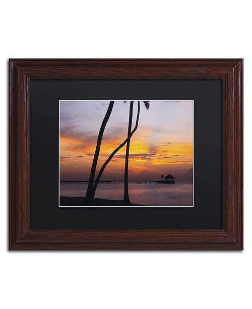 "Trademark Global David Evans 'Last Light-Maldives' Matted Framed Art - 11"" x 14"""