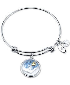 Florida State Adjustable Bangle Bracelet in Stainless Steel Silver Plated Charms