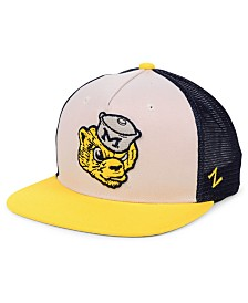 Zephyr Michigan Wolverines Paradigm Snapback Cap