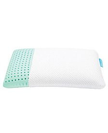 Bio Aloe Queen Low Profile Pillow