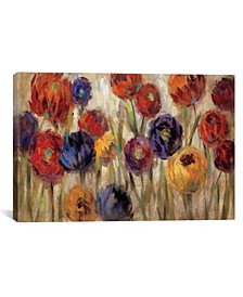 Asters and Mums by Silvia Vassileva Gallery-Wrapped Canvas Print Collection
