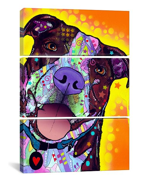 "iCanvas Daisy Pit by Dean Russo Gallery-Wrapped Canvas Print - 60"" x 40"" x 1.5"""