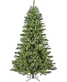 6.5'. Norway Pine Artificial Christmas Tree with Clear LED String Lighting