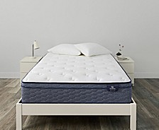 "Sleeptrue Alverson II 13"" Firm Euro Top Mattress Collection"