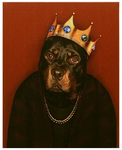 Empire Art Direct Pets Rock 'Big Doggie' Graphic Art on Wrapped Canvas Wall Art - 20'' x 16''