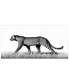 "'Fearless 2' Frameless Free Floating Tempered Glass Panel Graphic Wall Art - 24"" x 48''"