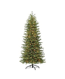 International 7.5-foot Pre-Lit Slim Miracle Shape Tree with 800 warm white LED Lights.