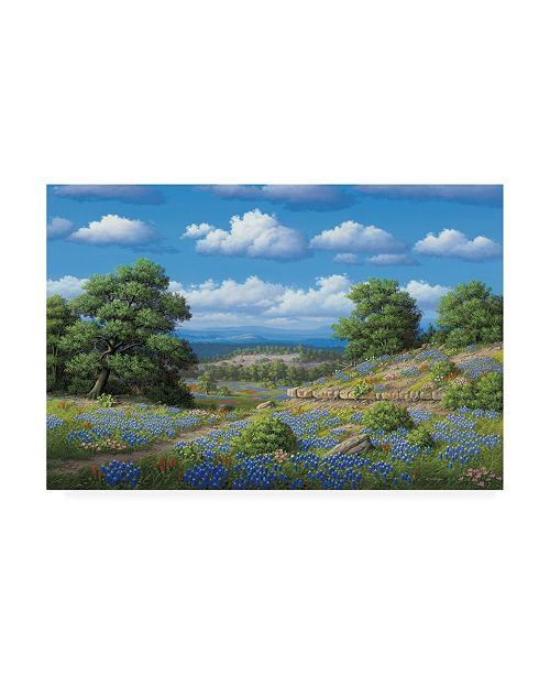 """Trademark Global R W Hedge Hill Country Blues Canvas Art - 27"""" x 33.5"""""""