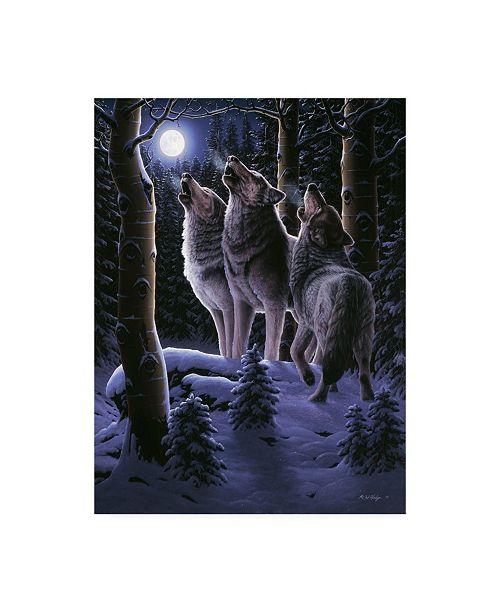 "Trademark Global R W Hedge Midnight Clear Canvas Art - 15.5"" x 21"""