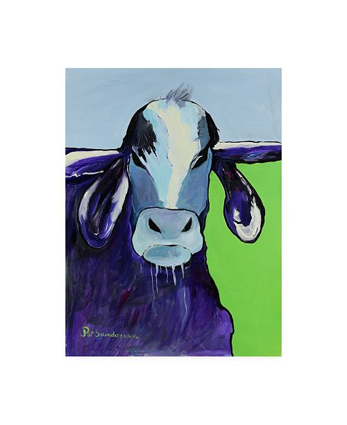 "Trademark Global Pat Saunders-White Bull Drool Blue Canvas Art - 27"" x 33.5"""