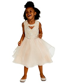 Little Girls Sequin Embroidered Dress