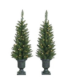 3.5ft. Potted Norway Pine with 50 Clear Lights - Set of 2