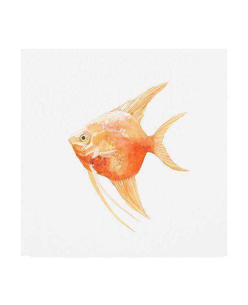 "Trademark Global Emma Scarvey Discus Fish III Canvas Art - 15.5"" x 21"""