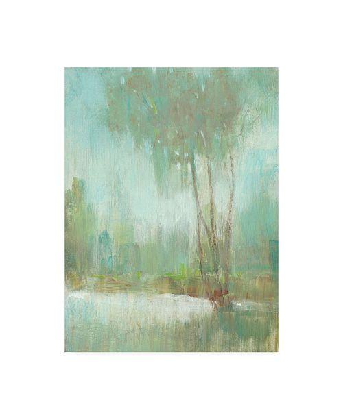 "Trademark Global Tim OToole Mist in the Glen II Canvas Art - 36.5"" x 48"""