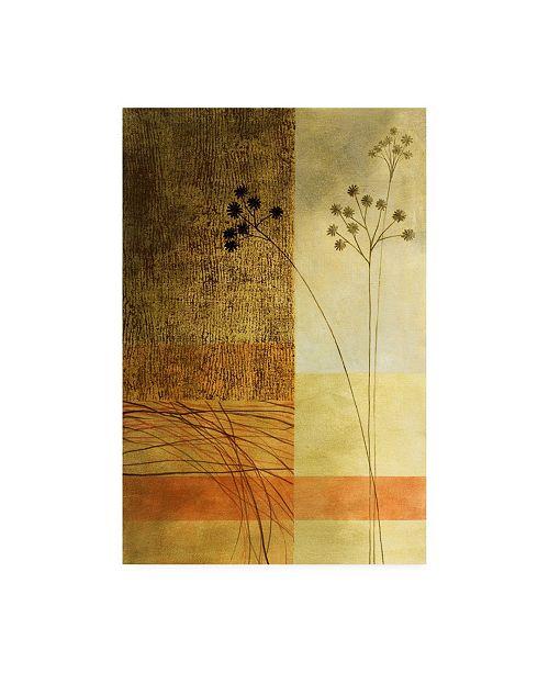 "Trademark Global Pablo Esteban Wild Flowers on Orange Canvas Art - 36.5"" x 48"""